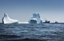 """BONAVISTA, NEWFOUNDLAND-JUNE, 2014: Le bateau d'Ed Kean, le """"Green Waters"""" au milieu d'iceberg echoues dans la baie de Bonavista, a Terre Neuve. Ed Kean's vessel, the Green Waters in the middle of icebergs in Bonavista Bay. (Picture by Veronique de Viguerie/Reportage by Getty Images)."""