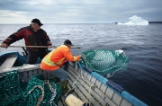 BONAVISTA, NEWFOUNDLAND-JUNE, 2014: Ed Kean et Philip Kennedy pechent un iceberg pour leur eau potable durant la mission dans la baie de Bonavista, a Terre Neuve. Ed Kean and Philip Kennedy are fishing an iceberg in Bonavista Bay. (Picture by Veronique de Viguerie/Reportage by Getty Images).
