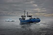 """BONAVISTA, NEWFOUNDLAND-JUNE, 2014: Le bateau d'Ed Kean, le """"Green Waters"""" au milieu d'iceberg echoues dans la baie de Bonavista, a Terre Neuve. Ed Kean's vessel, the Green Water in the middle of icebergs in Bonavista Bay. (Picture by Veronique de Viguerie/Reportage by Getty Images)."""