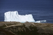 ST JOHN'S, NEWFOUNDLAND-JUNE, 2014: Des touristes admirent un iceberg echoue dans la baie de Fort Hampers a Saint Jean, a Terre Neuve.  An iceberg and Fort Hampers in St John's. From Signal Hill. (Picture by Veronique de Viguerie/Reportage by Getty Images).