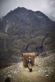 JOBALU, NEPAl-APRIL, 2015: Pour multiplier les récoltes de pommes de terre, les sherpas de la vallée de Rolwaling, changent d'habitats, trois fois par an. A chaque trimestre, il faut transporter le contenu de sa maison sur le dos.Ici des villageoises font le trajet entre Jobalu et Beding. (Picture by Veronique de Viguerie/Reportage by Getty Images)