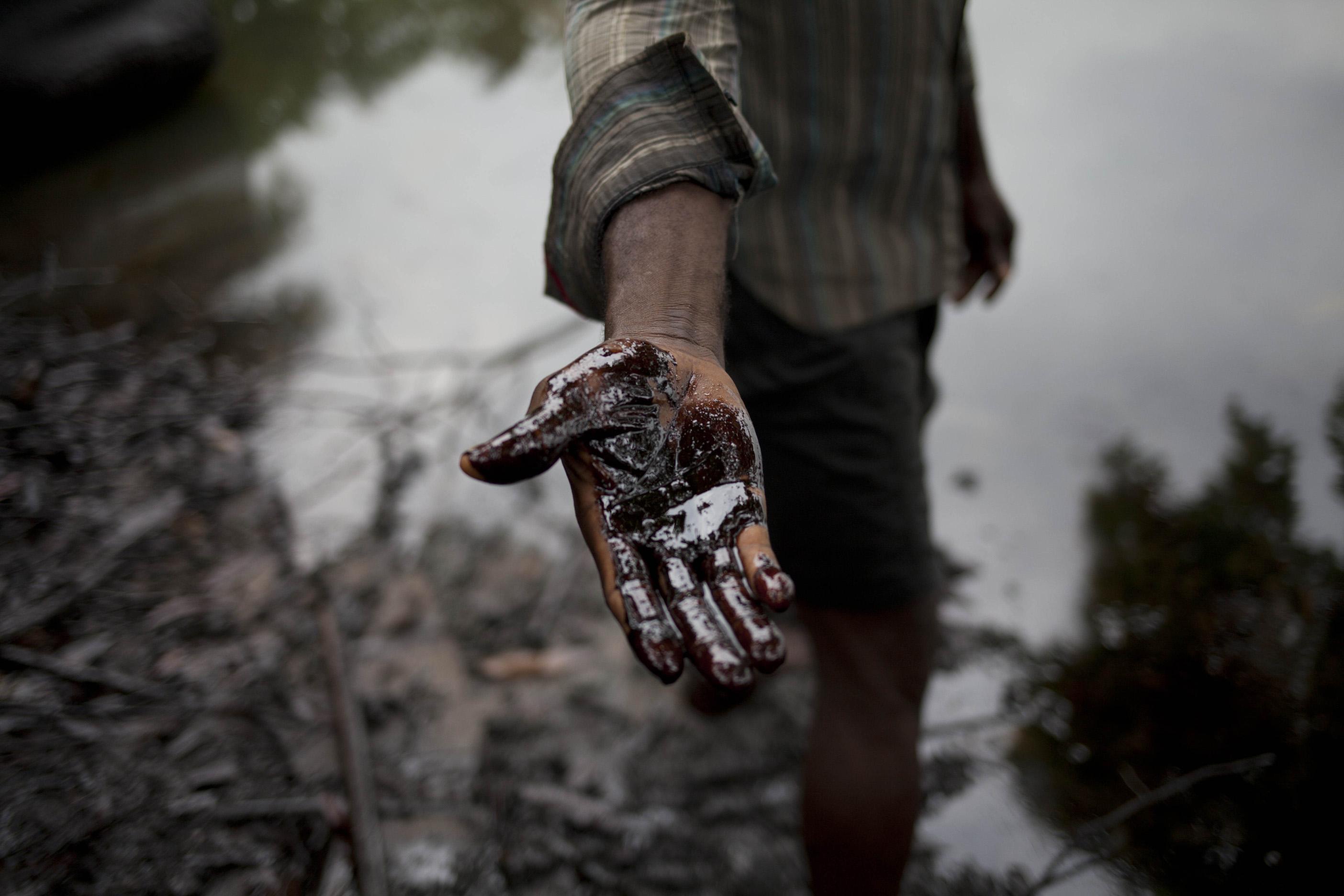 Image result for niger delta