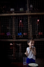 "MANILA, PHILIPINES- JUNE, 2017: Le petit Jefferson est nourri par le quartier. Son père, toxicoman a été arrété et sa mère a disparu. Il n'a plus personne et ce sont les gens du quartier qui lui donne un bol de riz de temps en temps. Le quartier ""happyland"" est l'un des plus pauvre de Manille. Pourtant Duterte y est très populaire. Et même si il est acusé de mener non pas une guerre contre la drogue mais une guerre contre les pauvres, il reste très apprécié. Young Jeffereson is relying on the charity of the neighborhood. His father, drug user is in jail and his mother disappeared, leaving him on his own. Happyland neighborhood is one of the poorest of Manila. Duterte remains very popular there despite the fact that he is accused of engaging a war against the poor instead of a war against the drug. (Picture by Veronique de Viguerie/ Reportage by Getty Images)"