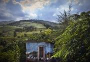 LEOGANE, HAITI- NOV, 2014: Yneuve Bernard avec son pret Babyloan a monte un poulailler. Sa maison detruite par le seisme, elle est venue s'installer sur les hauteurs de Leogane. (Picture by Veronique de Viguerie/Reportage by getty images)