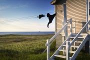 BONAVISTA, NEWFOUNDLAND-JUNE, 2014: La baie de Bonavista. Bonavista Bay. (Picture by Veronique de Viguerie/Reportage by Getty Images)