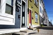 """ST JOHN'S, NEWFOUNDLAND-JUNE, 2014: Les maisons """"Jelly Beans"""" de Saint Jean. Typical Jelly Beans houses in St John's. (Picture by Veronique de Viguerie/Reportage by Getty Images)."""