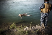 MOSUL, IRAQ- JULY, 2017: The Tigris is full with dead bodies of presumed ISIS fightres killed by the Iraqi Army. In a couple of hours we saw around 10 floating bodies. Some of the bodies seem to be of women.5Picture by Veronique de Viguerie/Reportage by Getty Images)