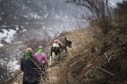 NA, NEPAL-APRIL, 2015: Une tempête de neige surprends deux femmes et leur yaks qu redescendent à Beding depuis le village de Na. (Picture by Veronique de Viguerie/Reportage by Getty Images)